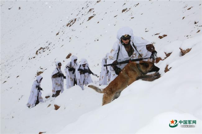 新疆边防官兵高原巡逻:配03式步枪和军犬