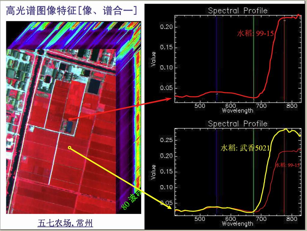 中国对地遥感还有这本事。。。。。。组图
