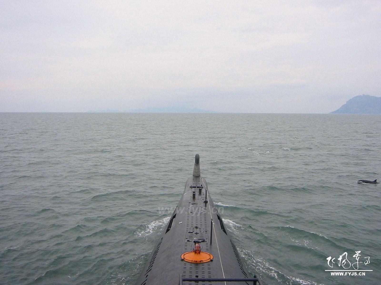 海豚与PLA潜艇同行 (清晰大图)
