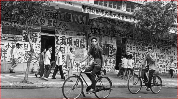中共历次政治运动导致了什么后果